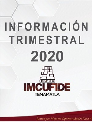 INFORMACION TRIMESTRAL