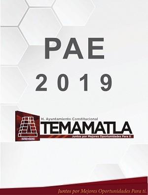 PAE 2019 AYUNTAMIENTO