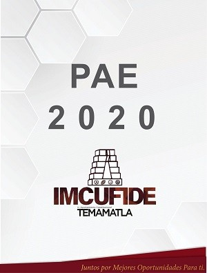 PAE 2020 IMCUFIDE
