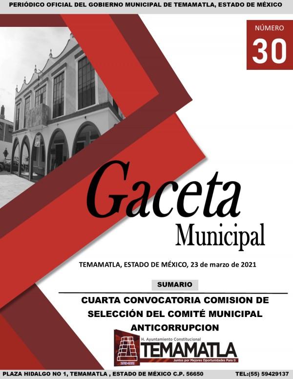 GACETA 30